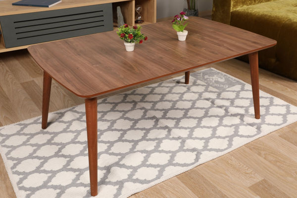 Picture of Nancy's Richton Park Coffee Table - Design - Brown - Fabricated Wood - 60 cm x 100 cm x 41.5 cm